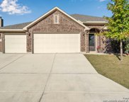 17823 Handies Peak, Helotes image