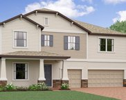 13446 White Sapphire Road, Riverview image