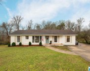 301 Mountain Dr, Trussville image