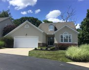 6816 Twin Oaks  Court, Canfield image