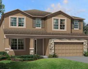 10131 Tuscan Sun Drive Unit 705, Riverview image