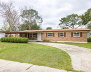 565 COPPITT DR E, Orange Park image