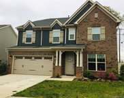 16637 Ardrey Place  Drive, Charlotte image