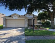 9651 Pacific Pines Court, Orlando image