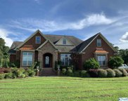 5631 County Road 446, Collinsville image