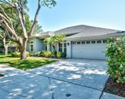 10517 Rochester Way, Tampa image