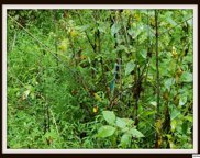 Lot 10A Blowing Cave Rd, Sevierville image