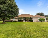 217 SW DRAGONFLY CT, Lake City image