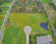 Lt3 Double Tree Ln, Grafton image