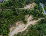 Lot 4 Stebbings  Rd, Malahat image