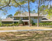 302 Mohican Dr., Georgetown image