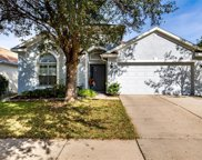 1170 Emerald Hill Way, Valrico image