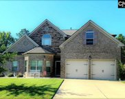 434 Lever Hill Road, Chapin image