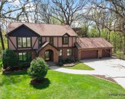 801 Red Stable Way, Oak Brook image