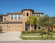 13713 Moonstone Canyon Drive, Riverview image
