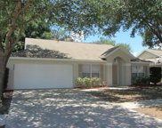 3808 Meadow Green Drive, Tavares image