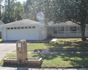 609 Sandy Creek Drive, Brandon image