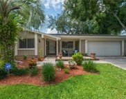 11817 Lipsey Rd, Tampa image