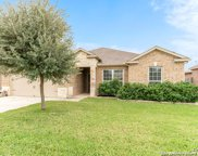 361 Callalily, New Braunfels image