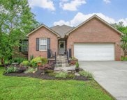 1817 Crazy Horse Drive, Maryville image
