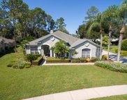 21533 Trumpeter Drive, Land O' Lakes image