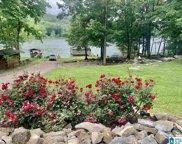 8210 Cedar Mountain Road, Pinson image
