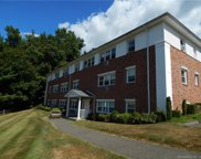 17 Fordyce  Court Unit 7, New Milford image
