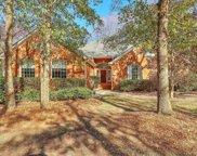 4200 Persimmon Woods Drive, Charleston image