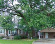 13378 Privacy Ln, Gonzales image