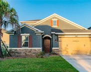 16351 Hyde Manor Drive, Tampa image