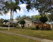4323 Southpark Drive, Tampa image