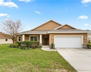 9742 Spring Lake Drive, Clermont image