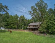 180 Kelseys Mill Road, Landrum image