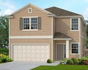 3922 HEATHERBROOK PL, Orange Park image