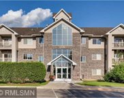 1321 Lake Drive W Unit #315, Chanhassen image