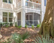 60 Fenwick Hall Alley Unit #816, Johns Island image