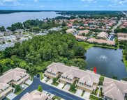 2546 Silverback Court, Palm Harbor image