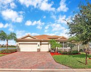 13620 Messino Ct, Estero image
