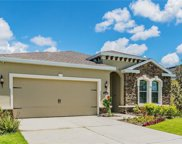 11143 Spring Point Circle, Riverview image