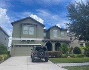 19227 Early Violet Drive, Tampa image