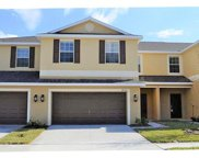 8614 Fiddleleaf Court, Tampa image