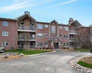 17940 Settlers Pond Way Unit #2A, Orland Park image