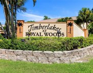 17420 Birchwood  Lane Unit 2, Fort Myers image