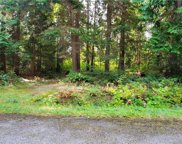 0 Lot 5 Deer Rd, Point Roberts image