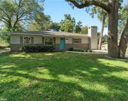 189 N Lake Franklin Drive, Mount Dora image