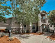 517 Spotted Owl Ct, Walnut Creek image