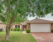502 Blueberry Hill Lane, Mansfield image