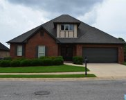 12776 Olmsted Cir, Mccalla image