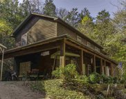 1175 Peaceful Way, Strawberry Plains image