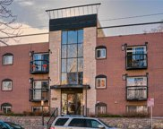 1231 N Downing Street Unit 103, Denver image